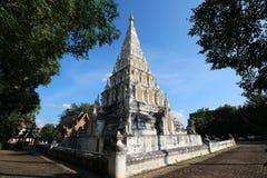 Sidosikt av pagoden Arkivfoto