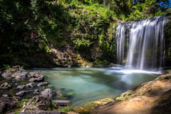 Sidosikt Oakley Creek Waterfall, Auckland, Nya Zeeland Arkivbild