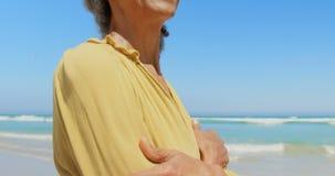 Sidosikten av den lyckliga aktiva höga afrikansk amerikankvinnan med armar korsade att stå på stranden 4k lager videofilmer
