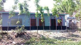 Sidr de mosquée photographie stock libre de droits