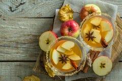 Sidra de maçã com canela e anis fotos de stock