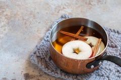 Sidra de manzana caliente con canela de la caída y anís de estrella fotos de archivo