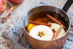 Sidra de manzana caliente con canela de la caída y anís de estrella foto de archivo libre de regalías