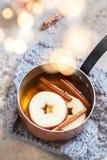 Sidra de manzana caliente con canela de la caída y anís de estrella imagen de archivo