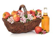 Sidra, manzanas y flor de la flor imagen de archivo