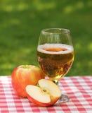 Sidra y manzanas de Apple fotos de archivo libres de regalías