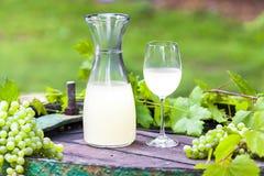 Sidro del vino Fotografia Stock Libera da Diritti