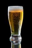 Sidro di Apple, birra Fotografia Stock Libera da Diritti