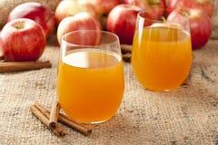 Sidro di Apple organico fresco fotografia stock
