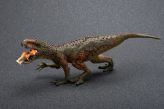 Sidve view Carcharodontosaurus toy catches a smaller dinosaur Stock Image
