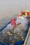 Sieć i czerwona flaga na tajlandzkiej łodzi rybackiej Zdjęcie Stock