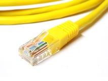 Sieć interneta kabel odizolowywający na białym tle Fotografia Royalty Free