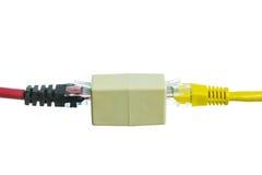 Sieć kabel z RJ45 odizolowywa obrazy royalty free
