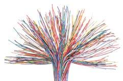 Sieć komputeru kabel Zdjęcia Royalty Free