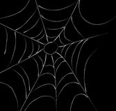 sieć pająka s ilustracja wektor