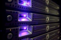 sieć serwery