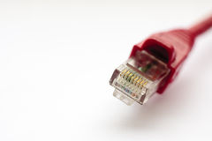 Sieć kabel fotografia stock