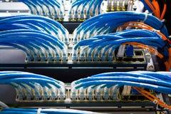 Sieć kabel Obraz Stock