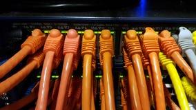 Sieć kable Zdjęcie Royalty Free