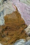 Sieć rybacka Zdjęcia Royalty Free