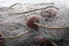 sieć rybacka przejrzysta Obrazy Royalty Free