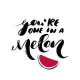 Sie sind das in einer Melone - inspirierend romantisches Zitat der freihändigen Tinte Lizenzfreies Stockbild