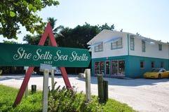 Sie verkauft Seeshells stockfotografie