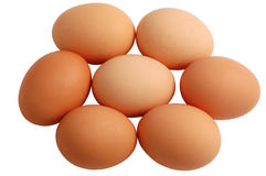 Sieben Eier getrennt auf weißem Hintergrund Stockfoto