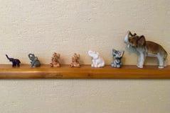 Sieben Elefanten Stockbilder