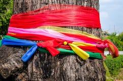Sieben Farbsatin auf dem Baum, zuverlässig in thailändischem Stockbild