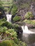 Sieben heilige Poolwasserfälle im haleakala nationa Stockbilder