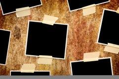 Sieben leere Fotos Stockbild