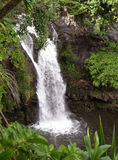 Sieben Pools, Maui Hawaii Stockbild