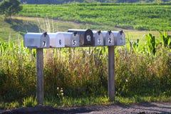 Sieben Postkästen auf einer Landstraße Stockbilder