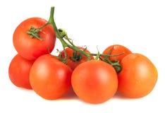 Sieben reife Tomaten auf einem weißen Hintergrund Lizenzfreies Stockfoto