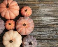 Sieben rustikale gealterte diffent Farben der Kürbise auf einem rustikalen hölzernen Hintergrund stockfotografie