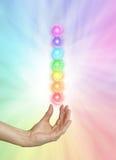 Sieben spinnendes Chakras auf Regenbogen farbigem Hintergrund Stockfotos