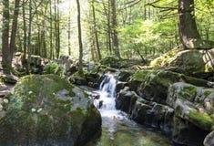 Sieben Wannen-Wasserfall Rocky Forest Stream Lizenzfreie Stockfotos