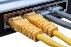 Sieci centrum z czopującym ethernetów kabli LAN odizolowywającym na białym tła zbliżeniu Fotografia Royalty Free