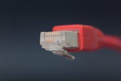 Sieci conexion Zdjęcia Stock