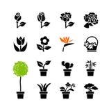 Sieci ikona ustawiająca - kwiaty i puszkować rośliny w garnkach Fotografia Royalty Free
