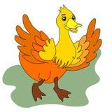 Sieci kaczka Ptak, mallard, zwierz?ta gospodarskie nakre?lenie r?wnie? zwr?ci? corel ilustracji wektora ilustracja wektor
