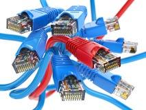 Sieci komputerowej LAN kable rj45 Połączenie z internetem wyborowi Fotografia Royalty Free