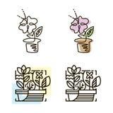 Sieci kreskowa ikona kwiatu ilustracyjny garnka wektor Kreskowej sztuki ikona Obrazy Royalty Free