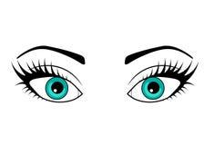 Sieci oko na białym tle ilustracja wektor