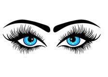 Sieci Piękny błękitny żeński oko Mieszkanie Stylowy logo ilustracja wektor