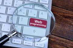 Sieci programowanie na klawiaturowym guziku Fotografia Royalty Free