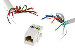 Sieci RJ45 UTP żeńska nasadka która patrzeje jak czułki potwór goni dwa UTP/STP kablami biały tło, Obraz Stock