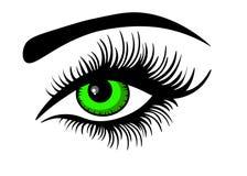 Sieci Wektorowy zielony oko ilustracja wektor