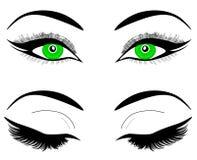 Sieci Zieleni oczy kobieta lub dziewczyna Czarne brwi, makeup, rzęsy Set otwarci i zamknięci oczy ilustracja wektor